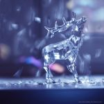 Elk by Snowfall-lullaby