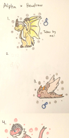 PKMNation:: Dragons and Fluff (CLOSED) by Dianamond
