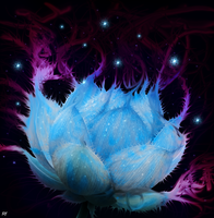 Blue Lotus by Romantar
