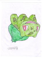 Bulbasaur from Pokemon. LOL by iFailAtEverything