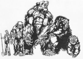 Werebear Forms by Stonegate