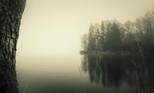 Misty Lake by Laazeri