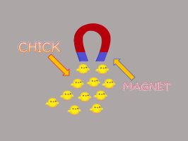 Chick Magnet! by anmjol0610