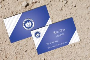 Business Card 3 for a Foundation by KungfuHamster