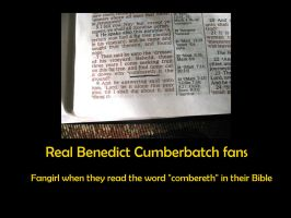 Real Benedict Cumberbatch fans by GoodOldBaz