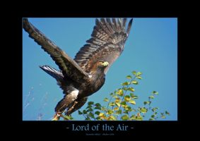 Lord of the Air by UnUnPentium115
