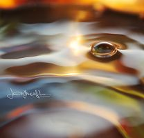 Water pearl... by lorymaryb