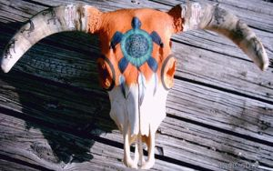 Turtle Dreamcatcher Native American themed skull by INVISIG0TH