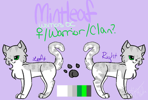 Mintleaf Reference Sheet by MintIeafs