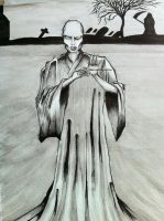 Voldemort by peter2005