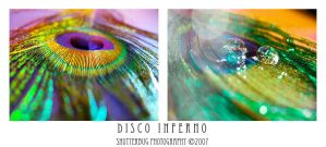 Disco Inferno by shutterbug226
