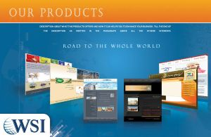 WSI products brochure by RavenGraphics
