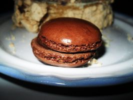 Chocolate macaron by Gallerica