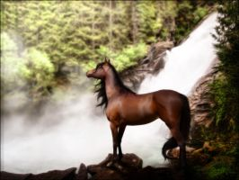 Stallion at the Waterfall by Msdirection