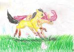 An afternoon race by Animals09890