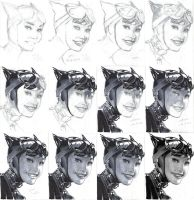 Catwoman - a study after Adam Hughes by BauerPower24777