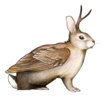 Wolpertinger by obeythekiwi