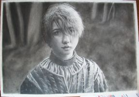 My name is not Arry. I'ts Arya, from house Stark by croatian-artist-girl
