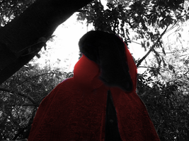 Red Riding Hood 6 by Luciferspet