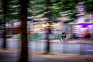 Spoiled panning in Paris by Rikitza