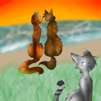 Ashfur's hate **redraw** by prussiawashere999