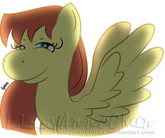Gift for Dshou: Shooting Star by LissyAnneChan
