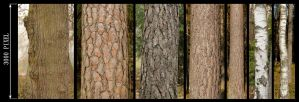 Bark Texture Pack by AGF81