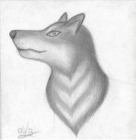 Wolfy sketch by PurpleMoonstone