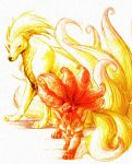 Vulpix and Ninetails by koooldawg