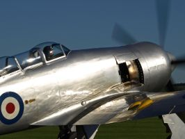 Sea Fury runs up engine by davepphotographer