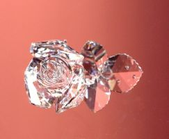 Scanned Glass Rose by spin0spin0suga