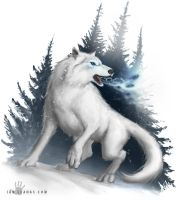 Winter Wolf by ianllanas