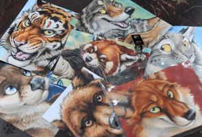 RF2012 Ready-to-Wear Badges by screwbald