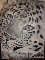 Leopard - Airbrush by ProAir