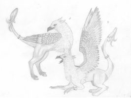 gryphon and hippogryph by emmacairnmccallum