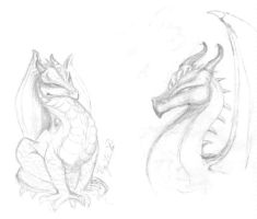 Dragons by neutralearth