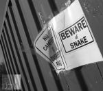 Beware of Snake! by JDS-photo
