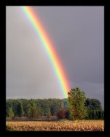 Rainbow by jago1984