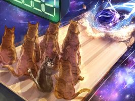 Cat Bowling by SuoniMac