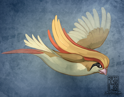 (1 hr) Warm Up 18 - Pidgeot by Pachabel