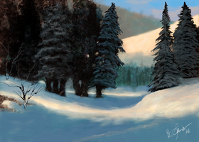 Morning Snow by ghost549