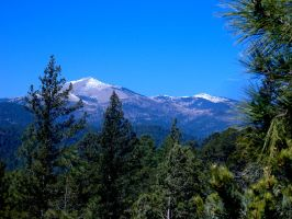 The Mountians of Ruidoso, NM by DeloreanREB