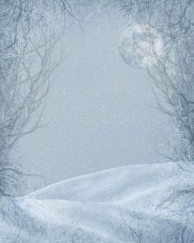 Winter 09 Free Background by ImaginedMoments