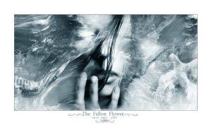 The Felon Flower by nemmy