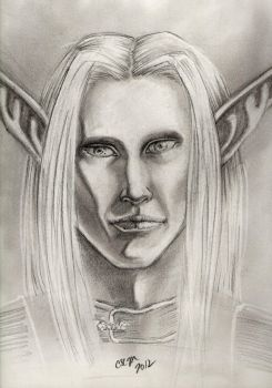 Portrait of Silmiron by teutelquessir