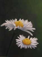 Daisies by tmcknight90
