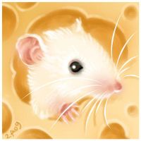 Cheesy mouse by Candra