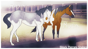 Raya and Ruta by ShockTherapyStables