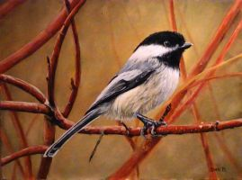 Chickadee by DanBurgessTheArtist