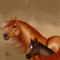 Arabian mare and foal by Gingerpony